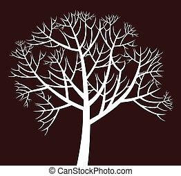 木, branchy
