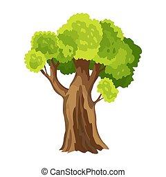 木, leafage., イラスト, 木。, 定型, foliage., 緑, 自然, 抽象的, 水彩画