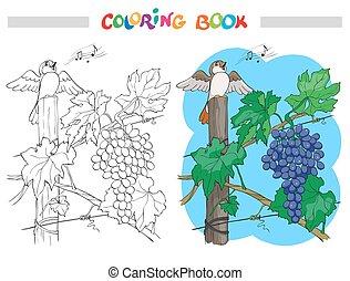 束, ベクトル, イラスト, 黒いブドウ, 白, 漫画, 着色, 鳥, 本