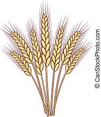 束, ベクトル, 小麦, 耳