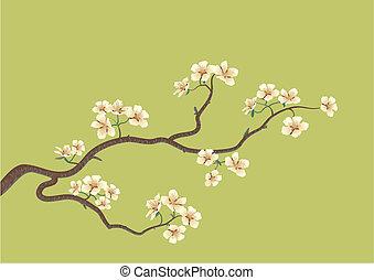 桜の木, 日本語