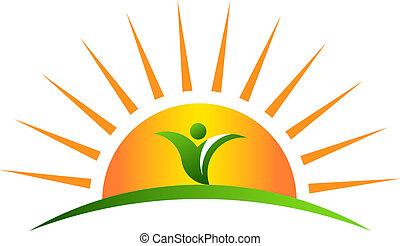 植物, 日の出