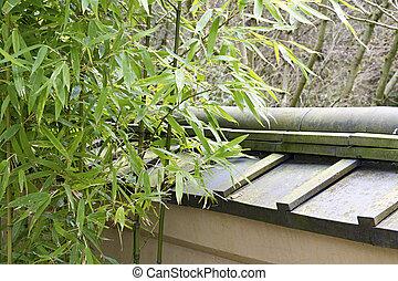 植物, 竹, 日本の庭