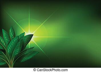 植物, 緑の背景