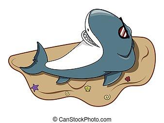 楽しみなさい, サメ, 浜