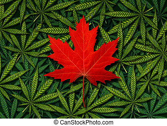 概念, カナダ, マリファナ