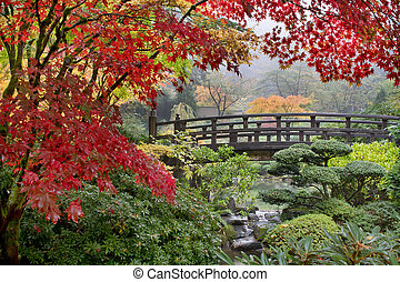 橋, かえで, 日本語, 木, 秋