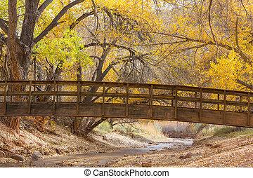 橋, 公園, 秋