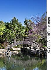橋, 庭, 木製である, 上に, 日本語, 池