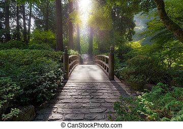 橋, 朝, ライト