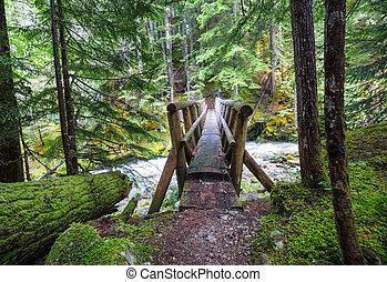 橋, 森林