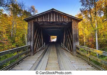 橋, 秋, 古い, カバーされた, 季節