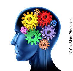 機能, 知性, 脳