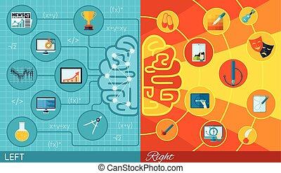機能, 脳, 権利, 左