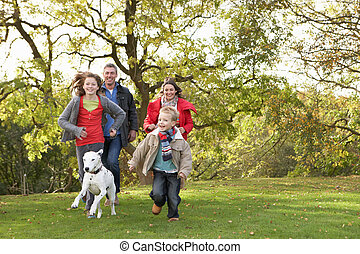 歩くこと, 家族, 公園, 若い, 犬, によって, 屋外で