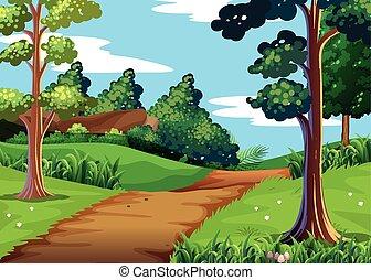 歩くこと, 現場, 道, 自然, 森林