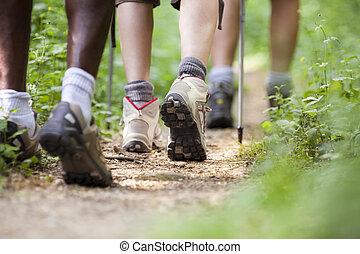 歩くこと, 靴, 人々, 木, 移住, 横列