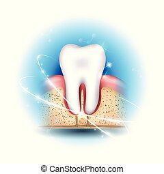 歯の健康, 心配