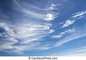 毛状突起, clouds.