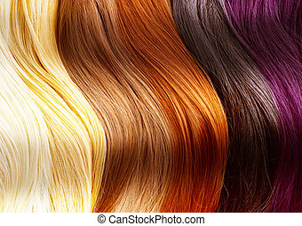 毛, 色, パレット