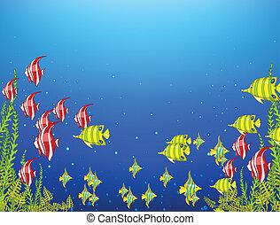 水中, 海洋, 世界