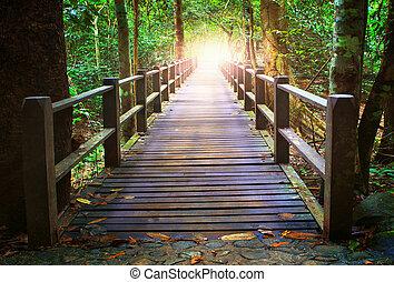 水, 交差, 海原, 木, 見通し, 流れ, 橋, 森林