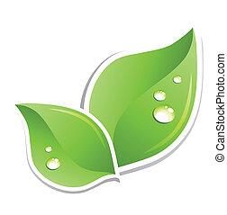 水, 緑, ベクトル, 葉, droplets.