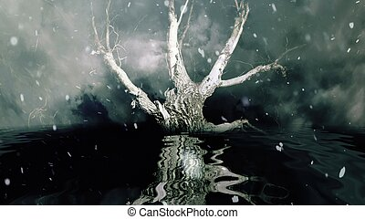 水, 降雪, 反映, 孤独, 木, 上に