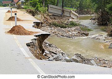 洪水, 損害