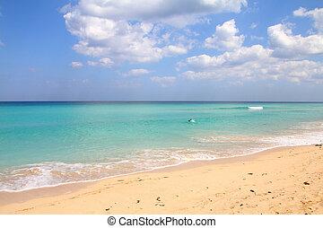 浜, キューバ
