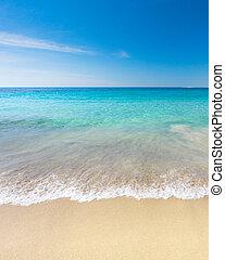 浜, パラダイス