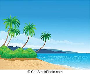 浜, 背景