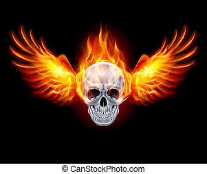 火, wings., fiery, 頭骨