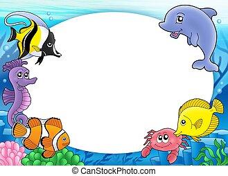 熱帯の魚, フレーム, ラウンド