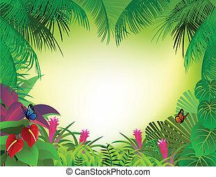 熱帯 森林, 背景