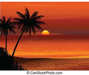 熱帯 浜, 日没