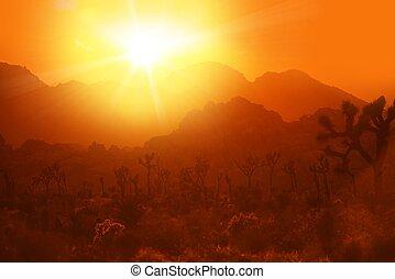 熱, カリフォルニア, 砂漠