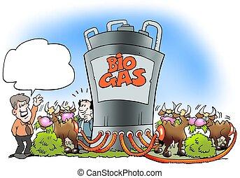 牛, 改宗者, biogas, 燃料