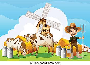 牛, 農場