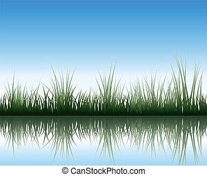 牧草地, 反射