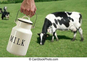 牧草地, 牛, ポット, 手, 農夫, ミルク