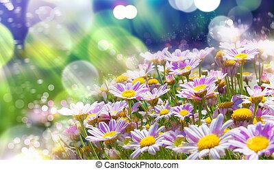 牧草地, 花が咲く, 背景, 太陽光線, 春