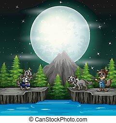 狼, 夜, 3, 風景, 岩