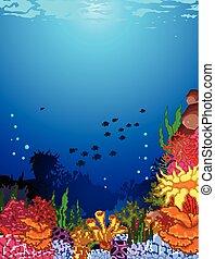 珊瑚, 水中, 美しさ, 光景