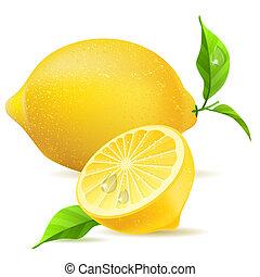 現実的, 葉, レモン, 半分