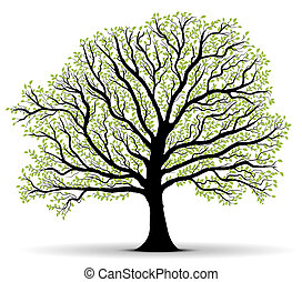 環境の保護, 緑の木