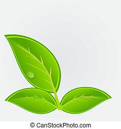 環境, ベクトル, plant., イラスト, アイコン