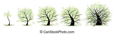 生活, 古い, tree:, 年齢, 青年, 成人期, 幼年時代, 段階, 青年期
