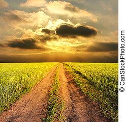 田園, 夕方, 道, 風景