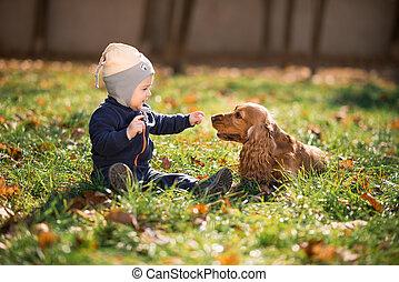 男の子, 草, 犬, モデル